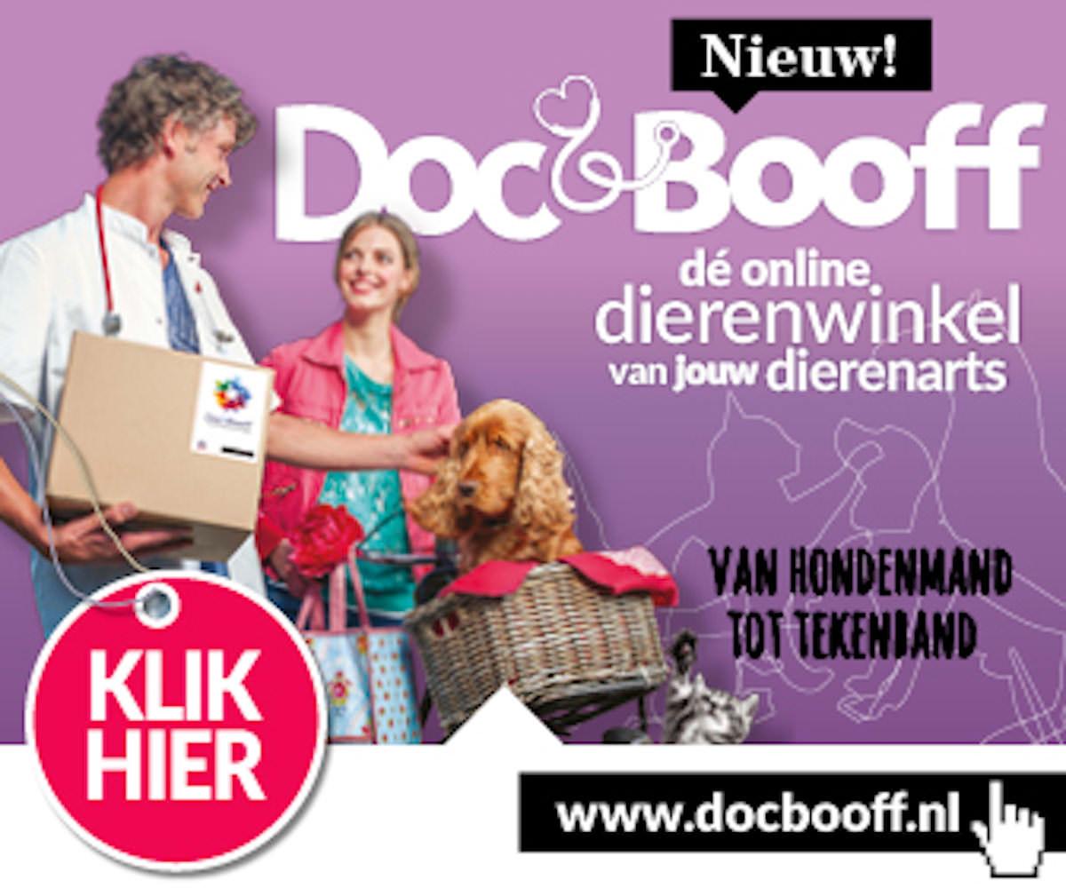 logo docbooff